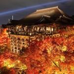 京都大賞典2017の予想を公開!