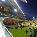 ドバイミーティング4競走の回顧と日曜競馬の注目馬