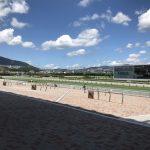 9月2週のレース回顧〜超高速馬場の秋競馬開幕週〜